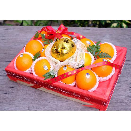 เซ็ตลังไม้ส้มซันคิสท์ 12 ลูก