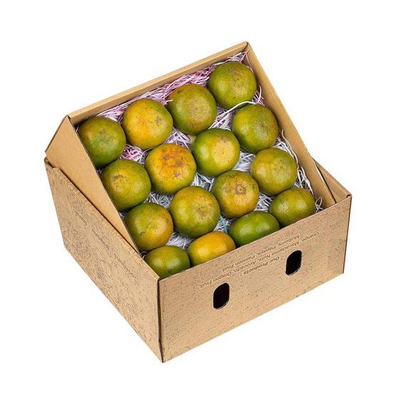 สวนร่มเกล้า ส้มสายน้ำผึ้ง 5 kg